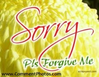 Sorry - Please forgive me