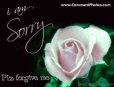 I am Sorry - Please forgive me