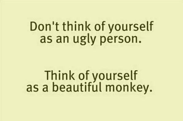 Dont Think Of Yourself as an Ugly Person. Think Yourself as a Beautiful Monkey