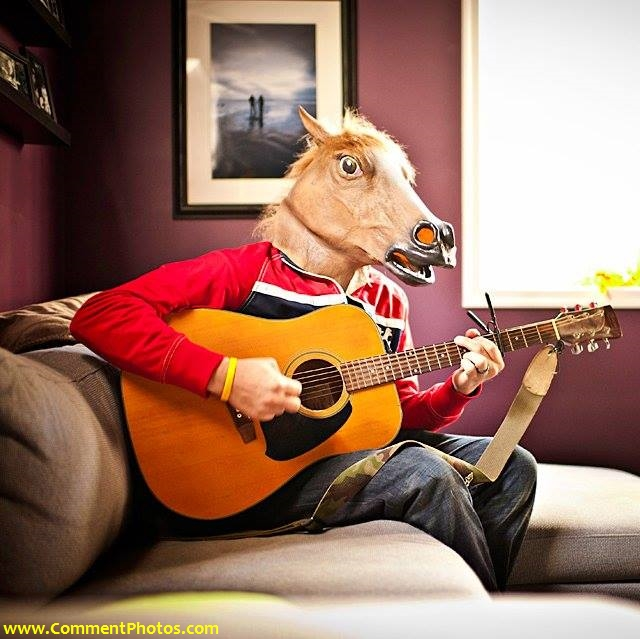 Horse Masked Man Playing Guitar