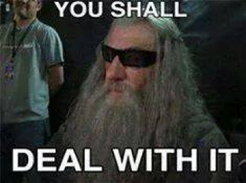 You Shall Deal With It - Hobbit Gandalf - The Lord of the Rings