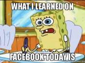 Spongebob - What I Learned On Facebook Today Is