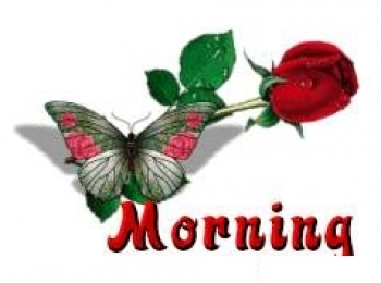 Good Morning - Butterfly and Red Roses