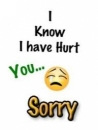 I Know I Have Hurt You - Sorry