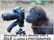 Nowadays Every Monkey with a DSLR is called a PHOTOGRAPHER